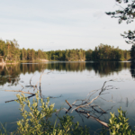 Exploring the Swedish Dalsland by Canoe